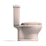 Beige lavatory. 3d rendering of a beige toilet with Clipping Path and shadow over white Stock Images