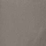 Beige leather Royalty Free Stock Image