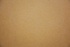 Beige leather Royalty Free Stock Photos