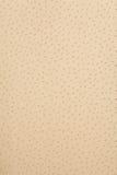 Beige leather textur Stock Photos