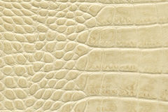 Beige  leather texture. Nice beige crocodile leather texture Stock Image
