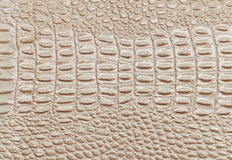 Beige leather texture background. Closeup photo. Reptile skin. Royalty Free Stock Photo