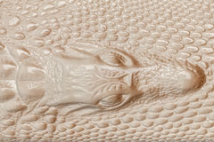 Beige leather texture background. Closeup photo. Reptile skin. Stock Images