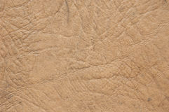 Beige leather texture Royalty Free Stock Photography