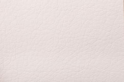 Beige leather texture print as background Stock Image