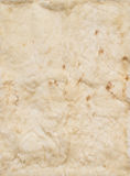Beige leathers of rabbits, four Royalty Free Stock Photo