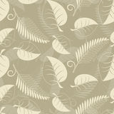 Beige leaves Royalty Free Stock Image