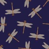 Beige Libellen des nahtlosen Musters auf einem dunkelblauen Hintergrund Stockbild