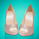 Beige louboutins shoes Stock Photography