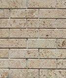 Beige masonry bricks Stock Photos