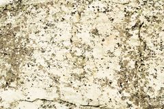 Beige natural stone texture with details, stains stock photo