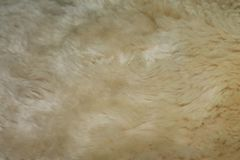 Beige Oberfläche des Pelzes für Hintergrund lizenzfreies stockfoto