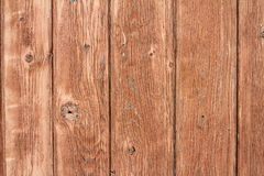 Beige painted weathered spruce planks texture Stock Image