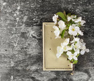 Beige rectangular plate with white cherry flowers Stock Photo