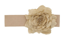 Beige Rose fabric on a belt Stock Image