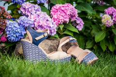 Beige sandals with blue soles lie. On the grass Stock Images