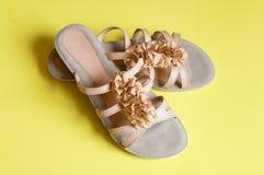 Häl för beige sandals för damtoalett låga fotografering för bildbyråer