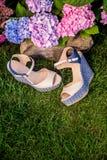 Beige sandals met blauwe zolen liggen op het gras stock foto's