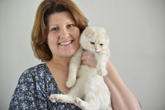 Beige Scottish falten Katze in den Händen von Frauen Stockfotografie