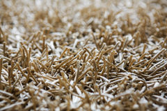 Beige shaggy carpet texture background Royalty Free Stock Photo