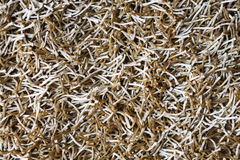 Beige shaggy carpet texture background Royalty Free Stock Images