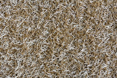 Beige shaggy carpet texture background Royalty Free Stock Photos