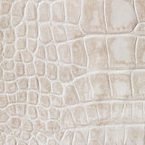 Beige skin of a reptile, crocodile. Texture genuine leather close-up, cognac tones, fashion trend. Beige skin of a reptile, crocodile. Texture genuine leather Stock Photo