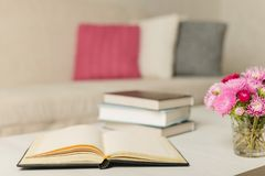 Beige sofa with plaid and colorful pillows pink, grey, white with books in the living room. Selective focus royalty free stock photo