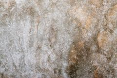 Beige texture background Stock Images