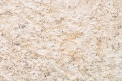 Beige texture close up. Beige texture. Fine-grained beige-cream color with a lot of irregularities close-up stock photos