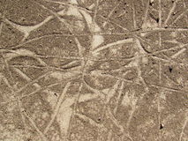 Beige Texture and Pattern in Dried Dirt Stock Photo