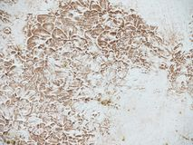 Texture plaster, beige texture of plaster, wall textural prints of paint. Beige texture of plaster, wall textural prints of paint, thick plaster, marble and Stock Photo