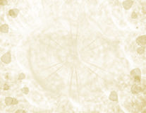 Beige textured fall background Stock Images