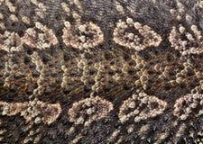 beige texturerad reptilhud för bakgrund Royaltyfri Bild