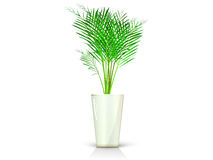 Beige vase with palm Stock Photo