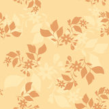 Beige vector seamless pattern with brown plants Stock Image