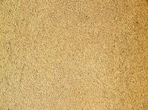 Beige wall background. A beige grainy wall background with its texture royalty free stock photos