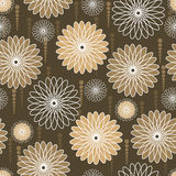 Beige and white flowers on brown background. English-style flower wallpaper, beige and white Royalty Free Stock Photography