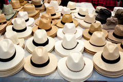 Beige and white straw hats in a row Royalty Free Stock Image