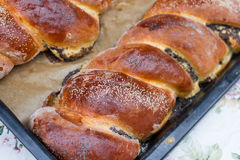 Beigli rolls, hungarian food with poppy seed and walnut Stock Photography