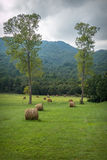 Beigua公园-乡下 库存图片