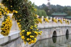 Beihai Park -- is an imperial garden in Beijing Stock Images