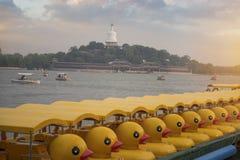Beihai park jest cesarskim ogródem zdjęcie royalty free