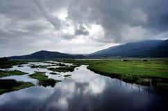 Beihai-Sumpfgebiet lizenzfreie stockfotos