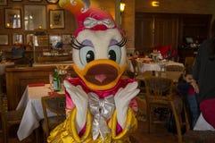 Beijando Daisy Duck Fotografia de Stock Royalty Free