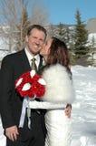 Beije o noivo foto de stock