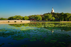 The Beijing Beihai Park White pagoda. Beihai (North Sea) Park is one of the most popular parks in the city of Beijing. Beihai Park has been a playground for Royalty Free Stock Photography