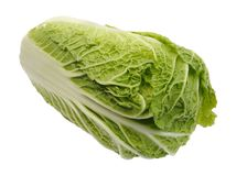 Beijing cabbage, isolated. Fresh Beijing cabbage on a white background, isolated Royalty Free Stock Photos