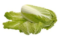 Beijing cabbage, isolated Stock Photos
