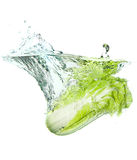 Beijing cabbage in water splash Stock Photography
